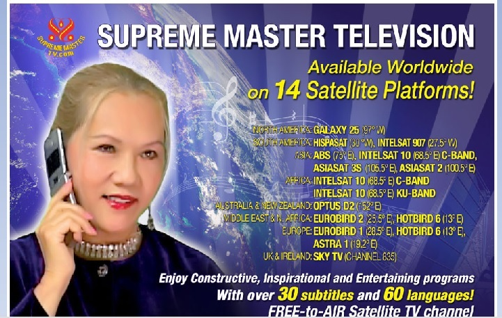 Skjermdump fra Supreme Master TV