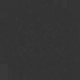 logo-bf-tilpasset-kopi